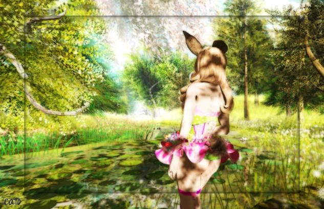 bunny_003