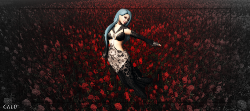 Crimson_Fields_004