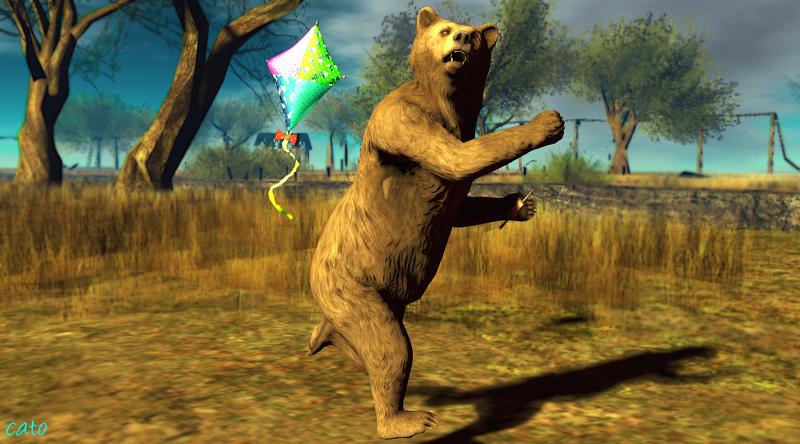 Bear_001