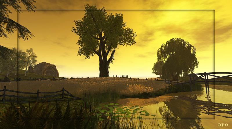 Quiet Wilderness_001