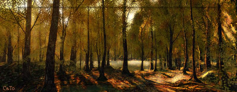 Trace_autumn_002