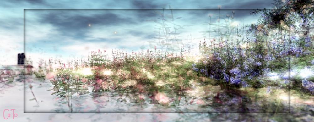 Worlds End Garden - I