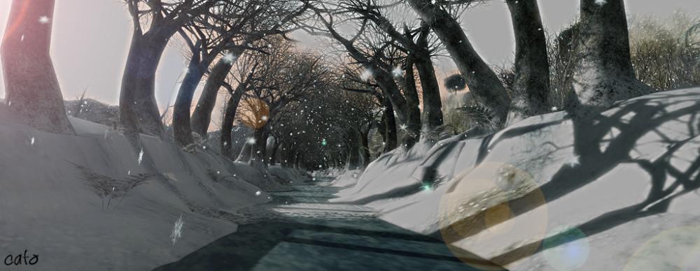 Trace_winter_001