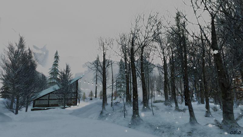 Trace_winter_003